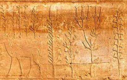 Botanical art - plant images from the great wall Karnak
